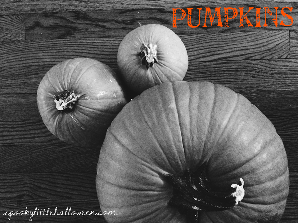 From pumpkins to lights, here are my 9 favorite Halloween decorating ideas | spookylittlehalloween.com