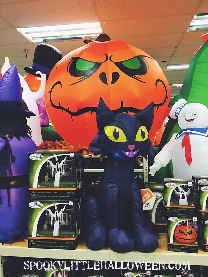 pumpkin-black-cat
