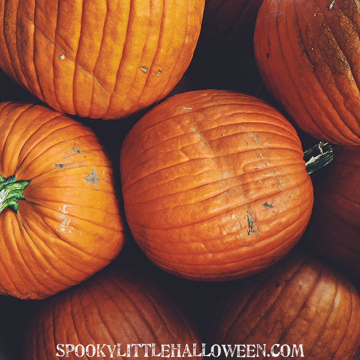 pumpkins-traditions